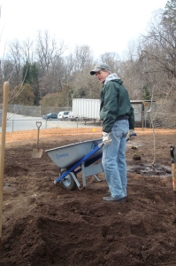 Day two ~ David hauls (beautiful) top soil for the planting of the understory.