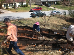 Spreading wood chips on pathways.