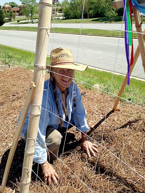 Elaine plants cucumbers under a bamboo trellis.