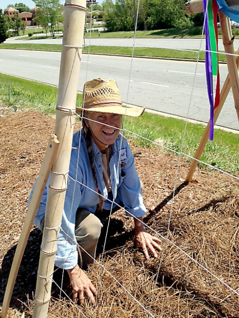 Elaine plants cucumbers under a bamboo trellis.