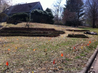 What used to be a grassy hillside is now over 400 square feet of growing beds.