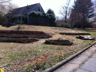 Its incredible how much can be accomplished when 20 folks help you out! The Greensboro Permaculture Guild rocks!