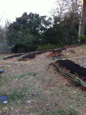 Because of the gas line and water meter, this center bed closest to the road will be sheet mulched, and not dug into.