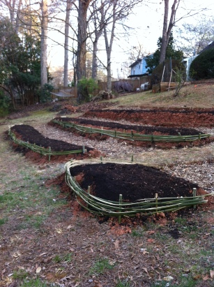 The very top bed will be planted on the sides as well as the top. Strawberries this year intermingled with insectary plants to grow, mature, and hold up the bed.