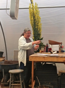 Pat Bush, a farmer for over 20 years, shares various seed propagation techniques in her Spring 2014 Seed Propagation Workshop.