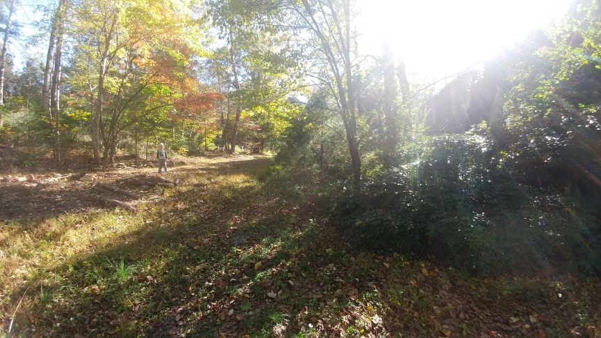 gPg Workday at Deer ThicketSanctuary