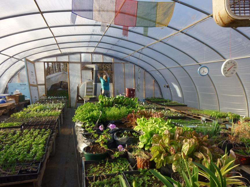 gPg Workday: Handance Farm WinterClean-up