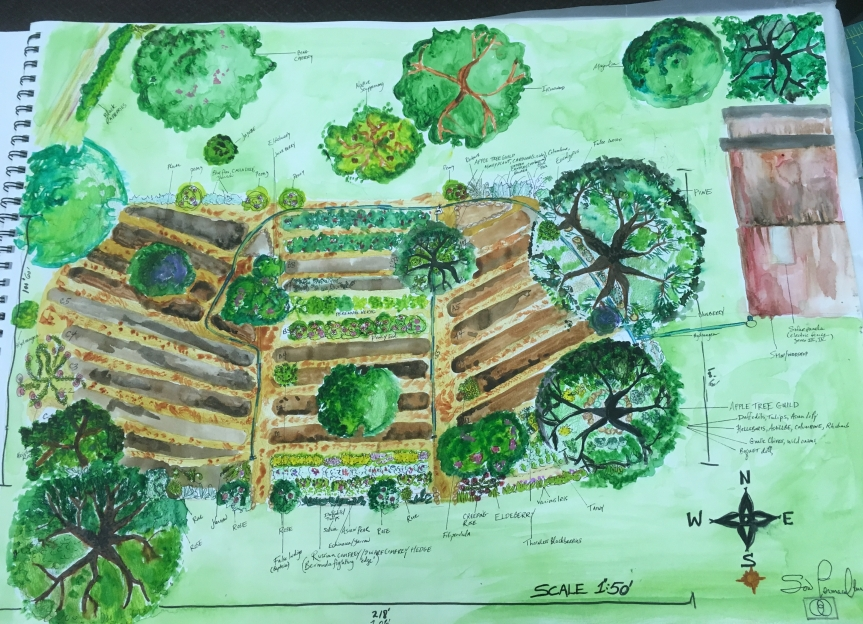 gPg Workday: Orchard Guild re-design @PTB